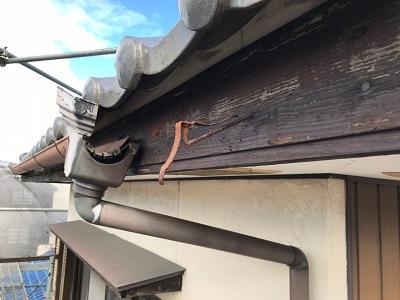 愛西市で、金具が錆びて破損した雨樋の交換を行いました。
