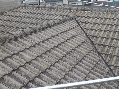 セメント屋根の塗装工事前の様子