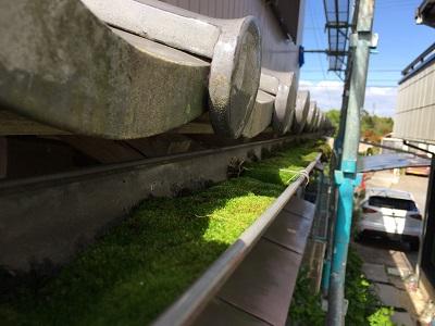 雨樋交換工事の現地調査の様子