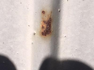 錆びたトタン壁の現地調査