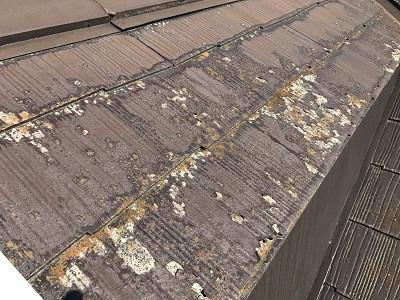 カラーベストの屋根の塗膜剥がれ、コケが生えている様子