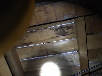 雨漏れが起きているお宅の屋根裏の写真