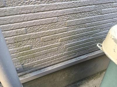 外壁に苔が生えてしまっている状態