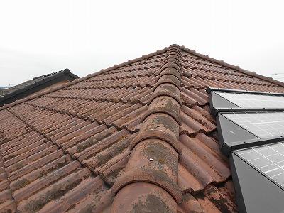 太陽光パネルが載った屋根
