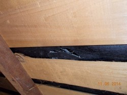 小屋裏から見た防水シートの破れ