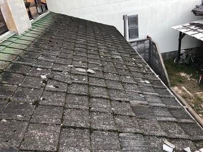台風被害による瓦の飛散、割れの現地調査の様子