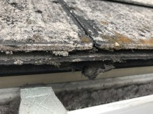 スレート屋根 苔 劣化