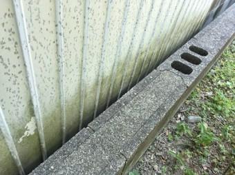 コケやカビが生えてる外壁