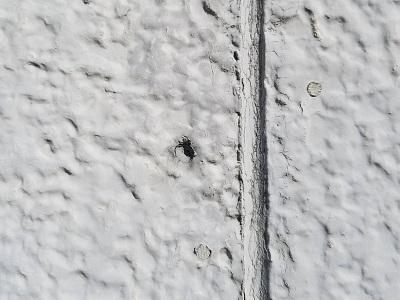 外壁塗装前の現状